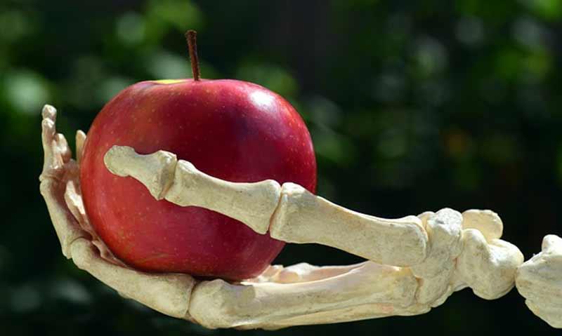 increase bone